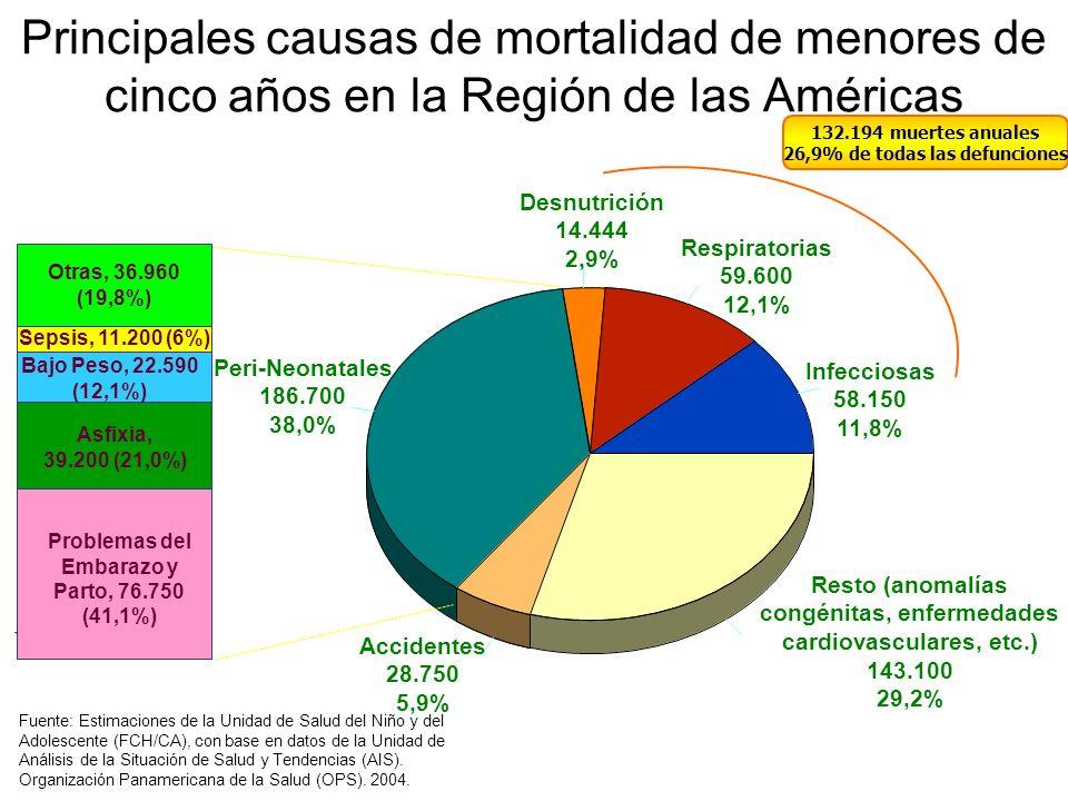 Principales causas de mortalidad de menores de cinco años en la Región de las Américas Infecciosas 58.150 11,8% Respiratorias 59.600 12,1% Desnutrició