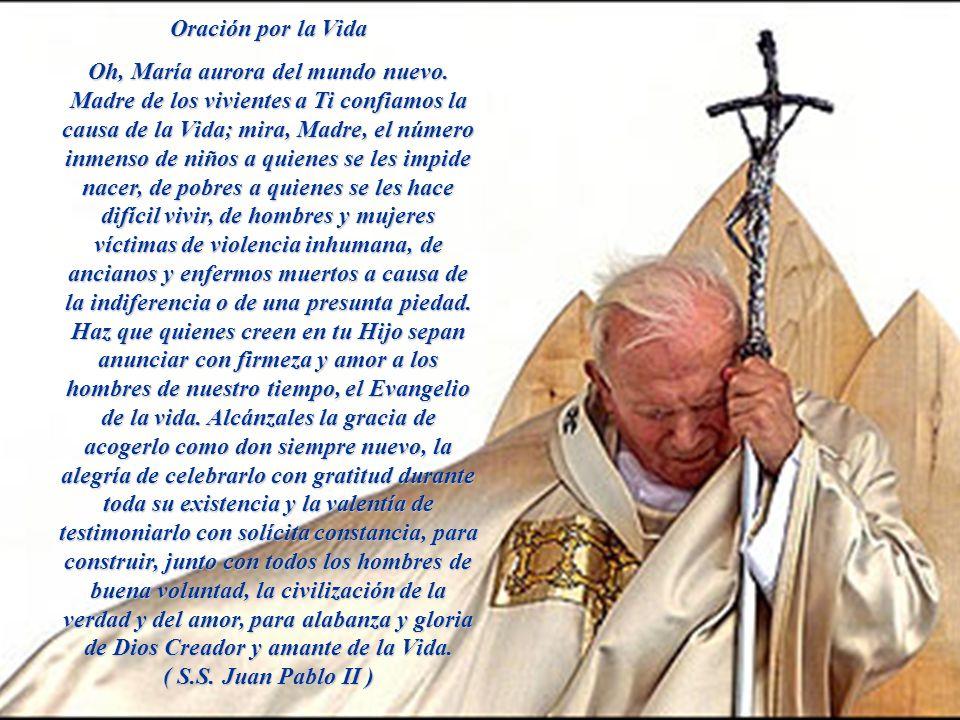 Oración por la Vida Oh, María aurora del mundo nuevo.