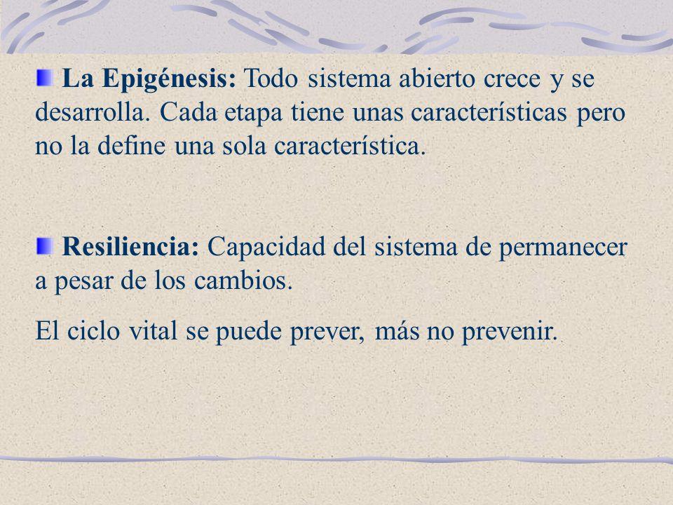 CRITERIOS PARA UBICAR LAS ETAPAS VITALES Subsistemas que conforman el sistema familia.