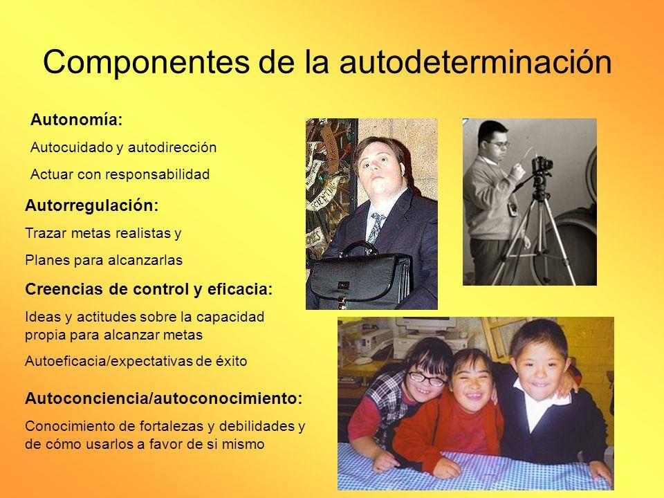 Situación actual FALTA DE OPORTUNIDADES DESEMPLEO AISLAMIENTO SOCIAL BAJO ESTATUS ECONOMICO BAJA AUTODETERMINACION DISCRIMINACION INSTITUCIONAL POLITICAS QUE DENIEGAN TRATO O ACCESO IGUALITARIO SERVICIOS QUE INFRINGEN SU LIBERTAD SERVICIOS QUE INVADEN SU INTIMIDAD