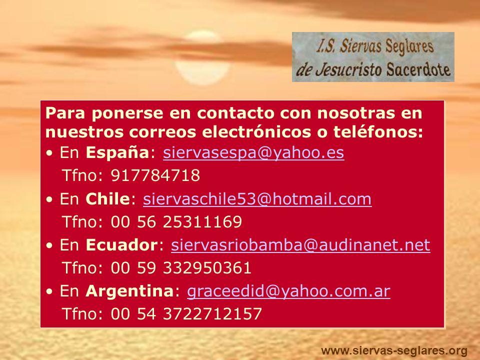 TESTIGO HUMILDE Y ALEGRE ANTE LOS HERMANOS.TESTIGO HUMILDE Y ALEGRE ANTE LOS HERMANOS.