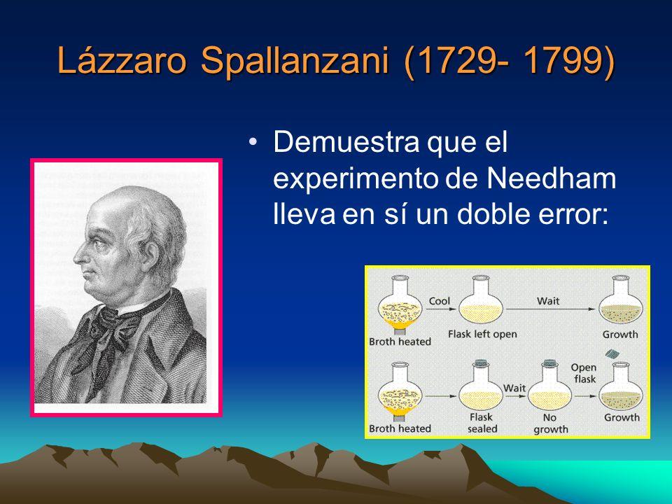 Lázzaro Spallanzani (1729- 1799) Demuestra que el experimento de Needham lleva en sí un doble error: