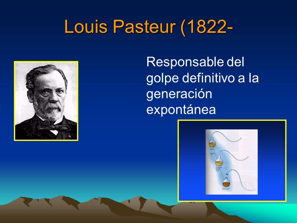 Louis Pasteur (1822- Responsable del golpe definitivo a la generación expontánea