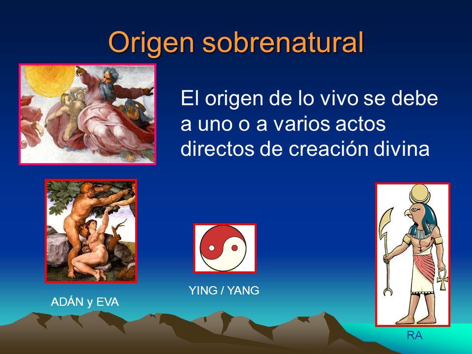 Origen sobrenatural El origen de lo vivo se debe a uno o a varios actos directos de creación divina RA YING / YANG ADÁN y EVA