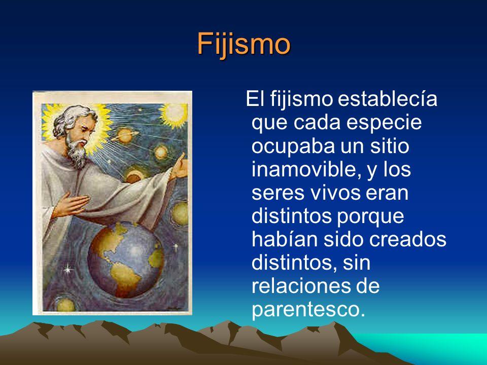 Fijismo El fijismo establecía que cada especie ocupaba un sitio inamovible, y los seres vivos eran distintos porque habían sido creados distintos, sin