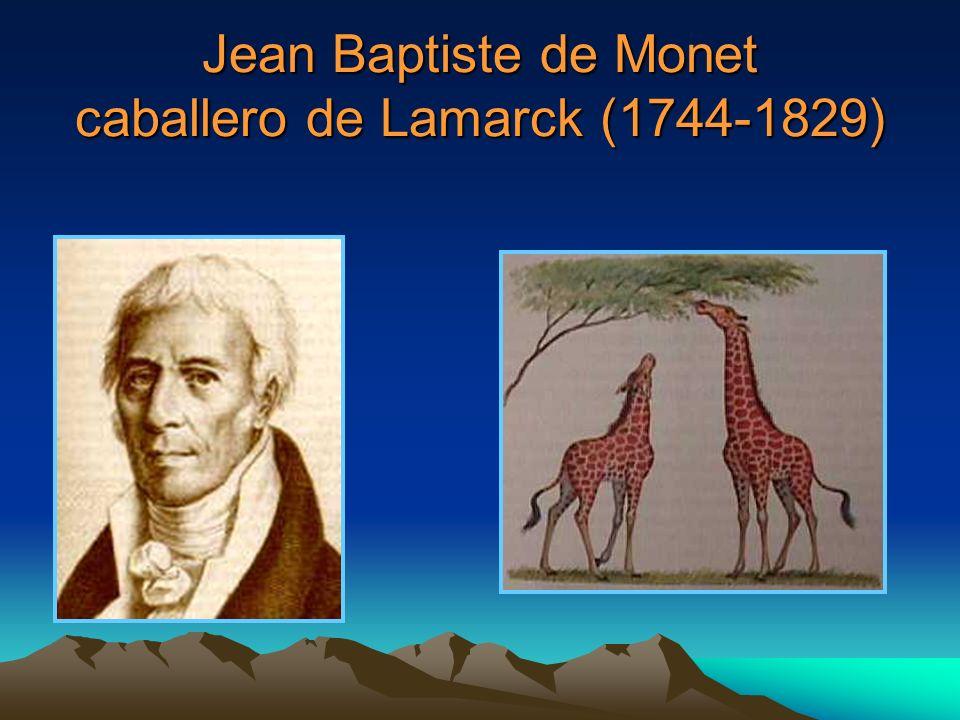 Jean Baptiste de Monet caballero de Lamarck (1744-1829)