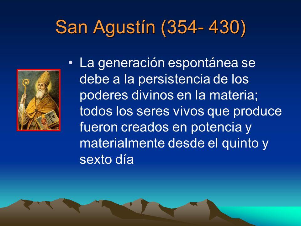 San Agustín (354- 430) La generación espontánea se debe a la persistencia de los poderes divinos en la materia; todos los seres vivos que produce fuer