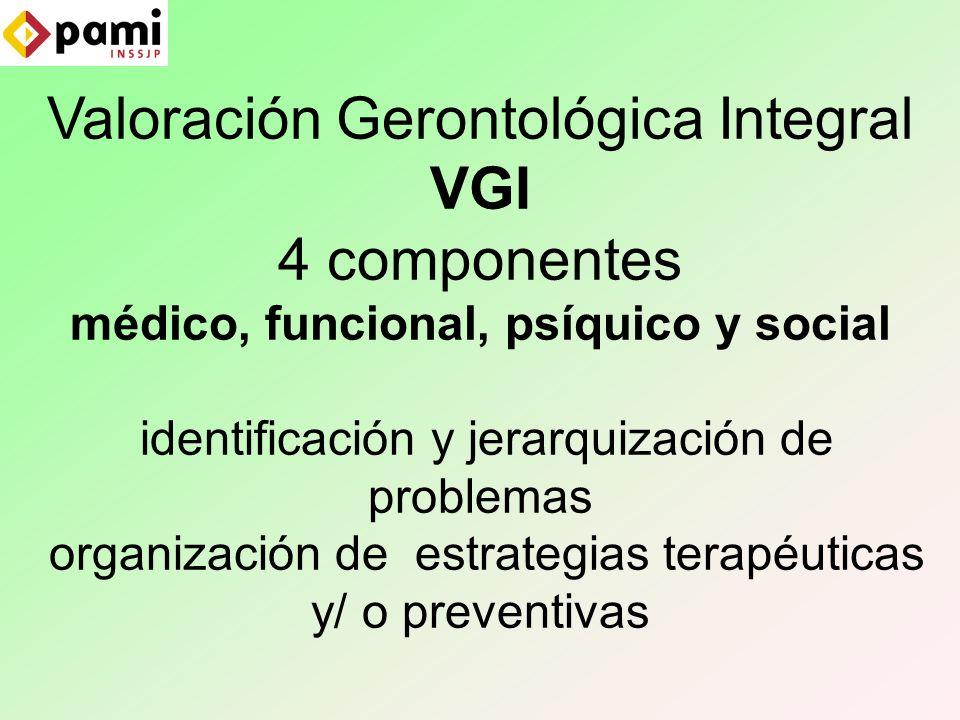 Valoración Gerontológica Integral VGI 4 componentes médico, funcional, psíquico y social identificación y jerarquización de problemas organización de estrategias terapéuticas y/ o preventivas
