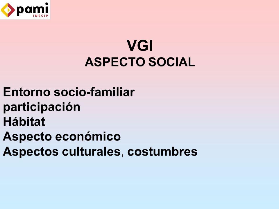 VGI ASPECTO SOCIAL Entorno socio-familiar participación Hábitat Aspecto económico Aspectos culturales, costumbres