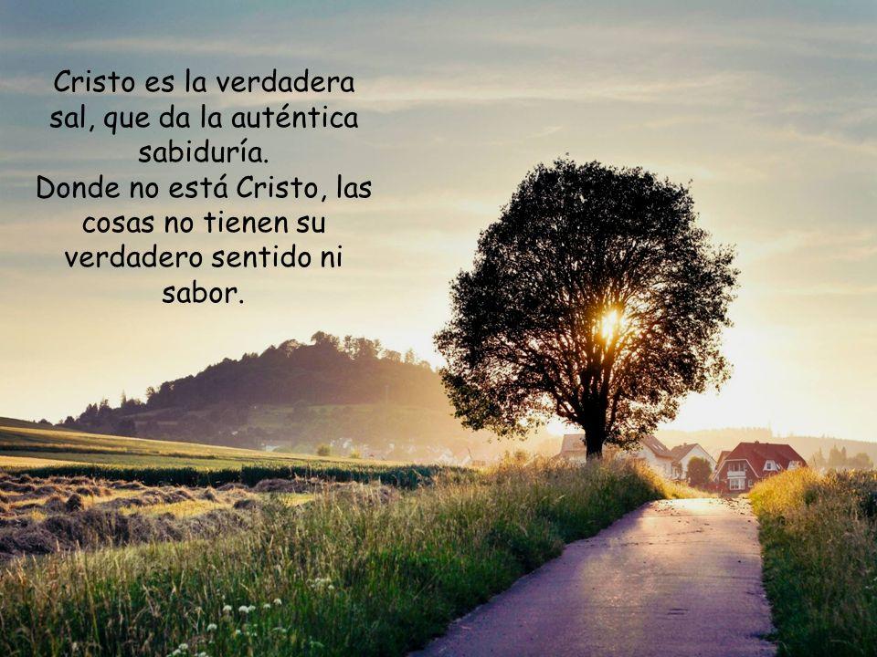 Los pobres de espíritu, los limpios de corazón, los misericordiosos son los que están preparados para dar otro sentido a la vida propia y a la vida de los otros.