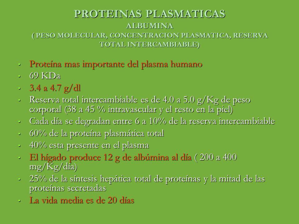 PROTEINAS PLASMATICAS ALBUMINA ( PESO MOLECULAR, CONCENTRACION PLASMATICA, RESERVA TOTAL INTERCAMBIABLE) Proteína mas importante del plasma humano Pro