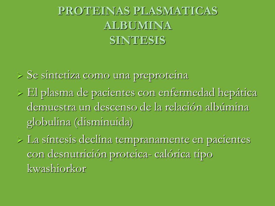 PROTEINAS PLASMATICAS ALBUMINA SINTESIS Se sintetiza como una preproteina Se sintetiza como una preproteina El plasma de pacientes con enfermedad hepá