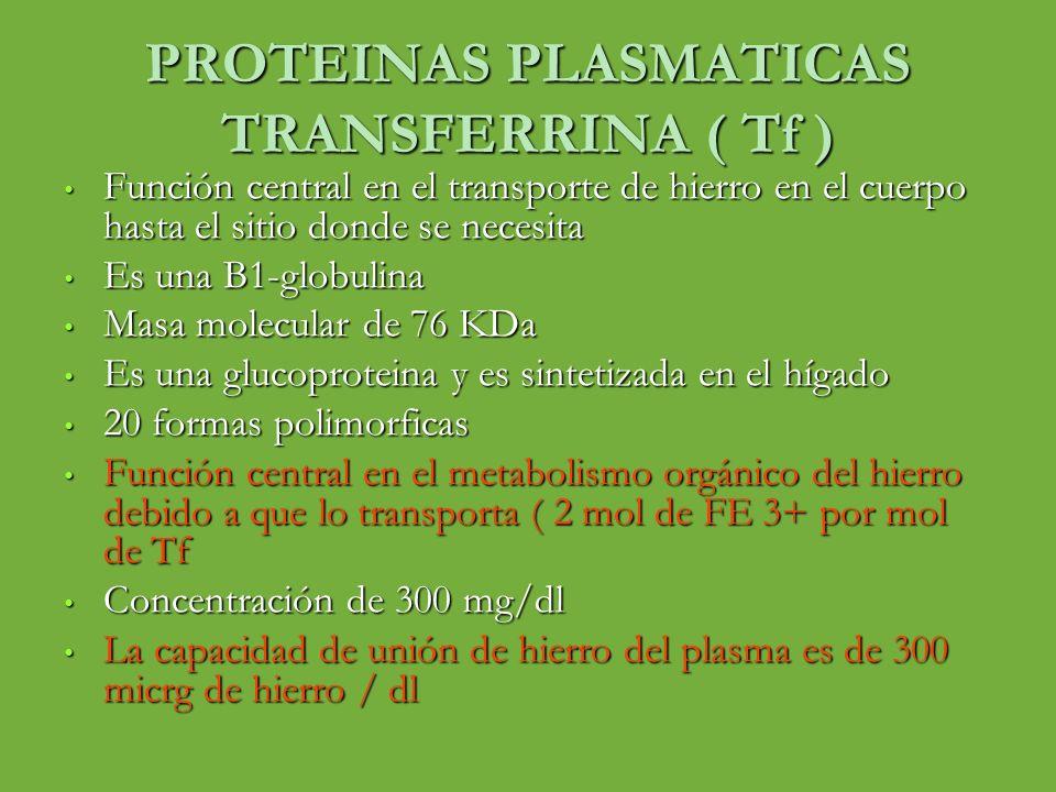 PROTEINAS PLASMATICAS TRANSFERRINA ( Tf ) Función central en el transporte de hierro en el cuerpo hasta el sitio donde se necesita Función central en