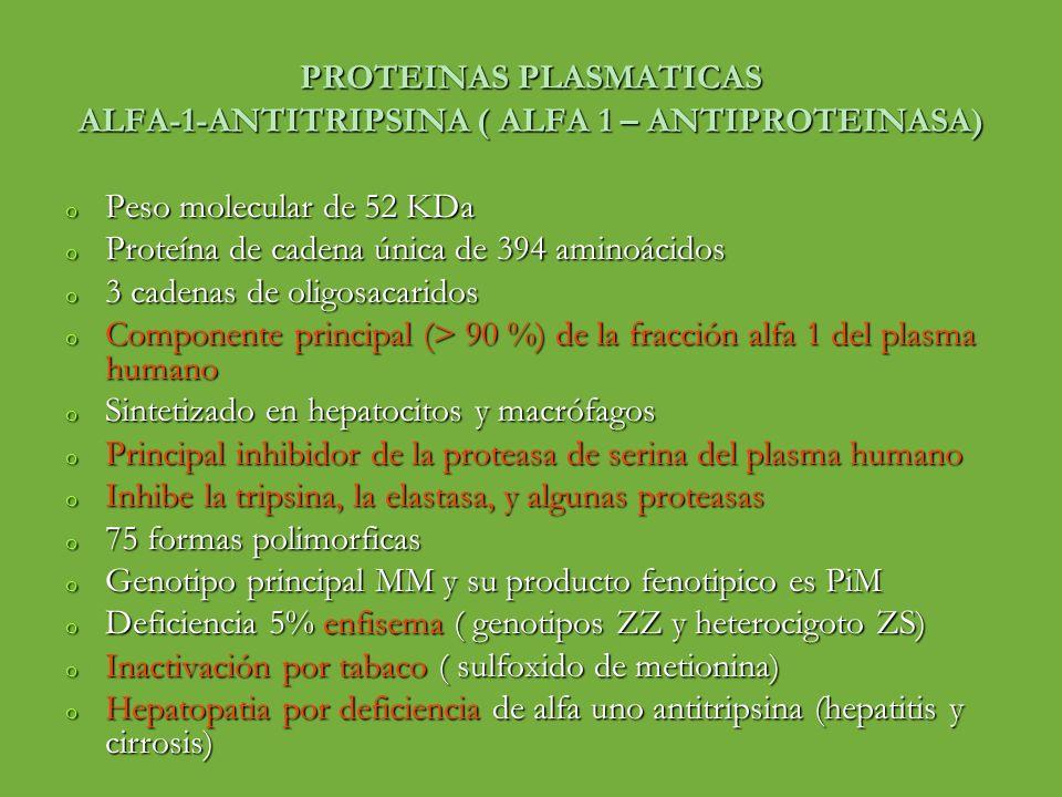 PROTEINAS PLASMATICAS ALFA-1-ANTITRIPSINA ( ALFA 1 – ANTIPROTEINASA) o Peso molecular de 52 KDa o Proteína de cadena única de 394 aminoácidos o 3 cade