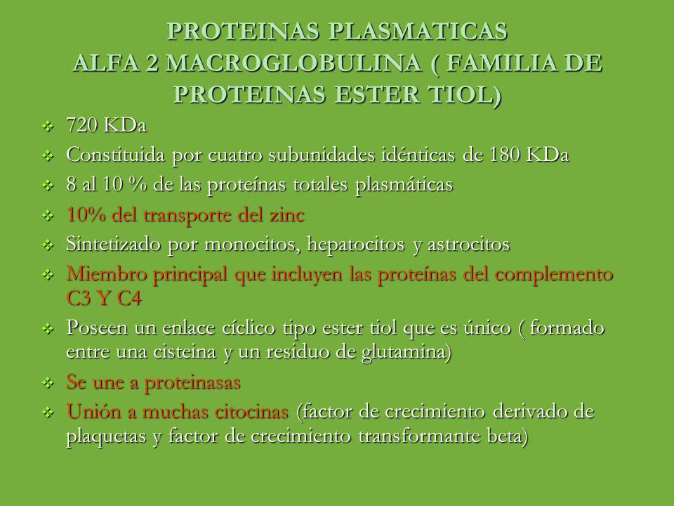 PROTEINAS PLASMATICAS ALFA 2 MACROGLOBULINA ( FAMILIA DE PROTEINAS ESTER TIOL) 720 KDa 720 KDa Constituida por cuatro subunidades idénticas de 180 KDa