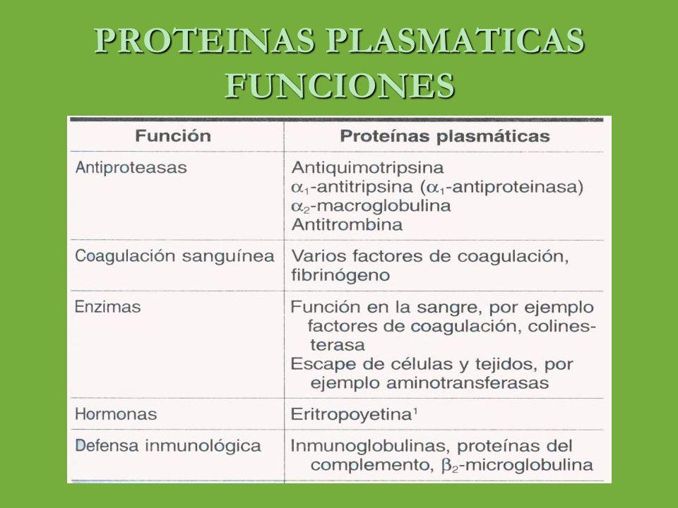 PROTEINAS PLASMATICAS ALFA-1-ANTITRIPSINA ( ALFA 1 – ANTIPROTEINASA) o Peso molecular de 52 KDa o Proteína de cadena única de 394 aminoácidos o 3 cadenas de oligosacaridos o Componente principal (> 90 %) de la fracción alfa 1 del plasma humano o Sintetizado en hepatocitos y macrófagos o Principal inhibidor de la proteasa de serina del plasma humano o Inhibe la tripsina, la elastasa, y algunas proteasas o 75 formas polimorficas o Genotipo principal MM y su producto fenotipico es PiM o Deficiencia 5% enfisema ( genotipos ZZ y heterocigoto ZS) o Inactivación por tabaco ( sulfoxido de metionina) o Hepatopatia por deficiencia de alfa uno antitripsina (hepatitis y cirrosis)
