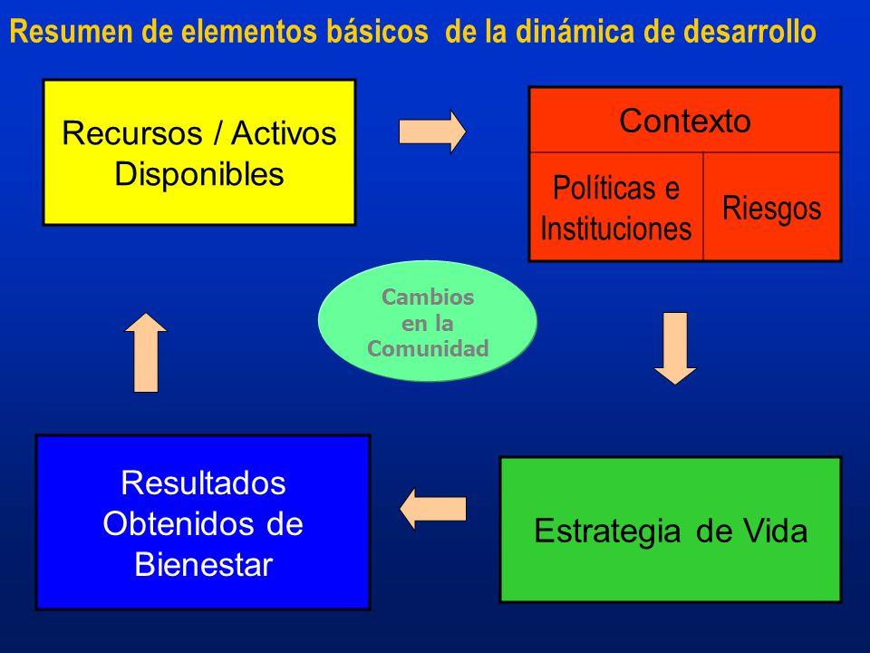 Resumen de elementos básicos de la dinámica de desarrollo Estrategia de Vida Recursos / Activos Disponibles Resultados Obtenidos de Bienestar Contexto Políticas e Instituciones Riesgos Cambios en la Comunidad