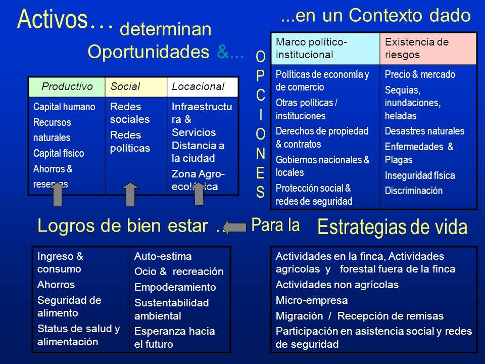 Activos … determinan Oportunidades &... Actividades en la finca, Actividades agrícolas y forestal fuera de la finca Actividades non agrícolas Micro-em