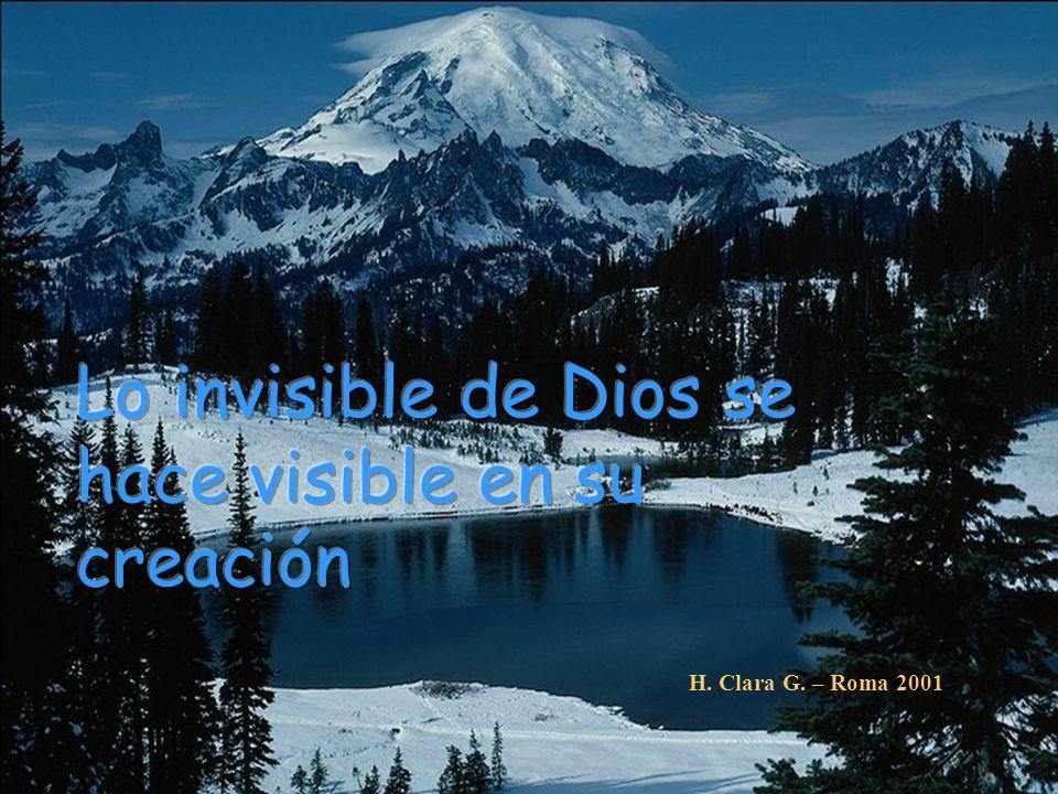 EN LA NATURALEZA Lo invisible de Dios se hace visible en su creación