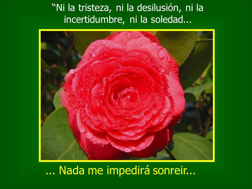 Ni la tristeza, ni la desilusión, ni la incertidumbre, ni la soledad......