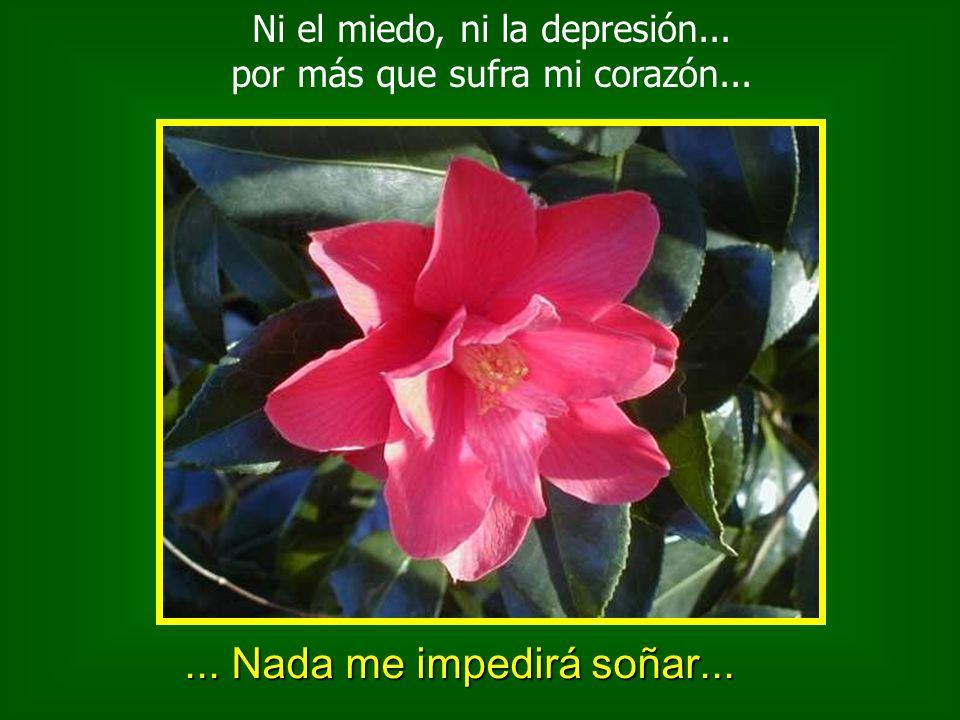 Ni la tristeza, ni la desilusión, ni la incertidumbre, ni la soledad...... Nada me impedirá sonreir...