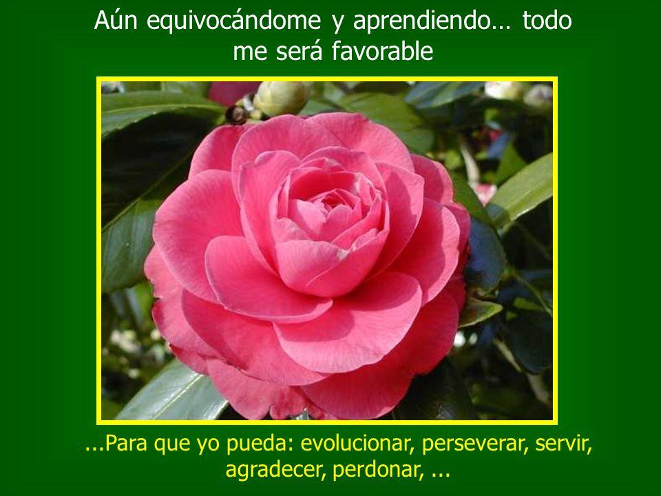 ...Para que yo pueda: evolucionar, perseverar, servir, agradecer, perdonar,...
