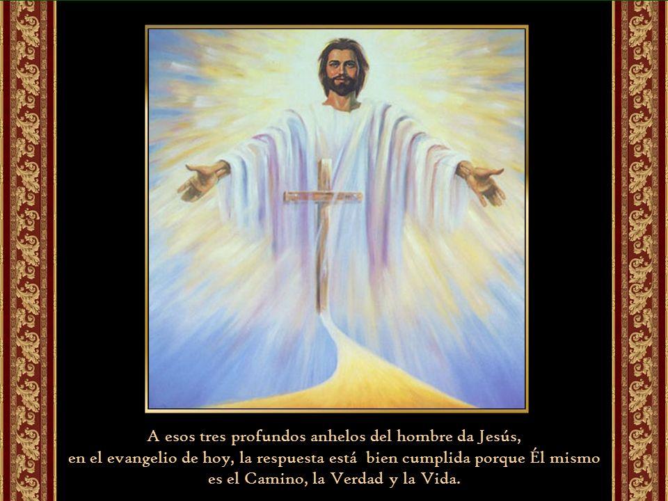 A esos tres profundos anhelos del hombre da Jesús, en el evangelio de hoy, la respuesta está bien cumplida porque Él mismo es el Camino, la Verdad y la Vida.