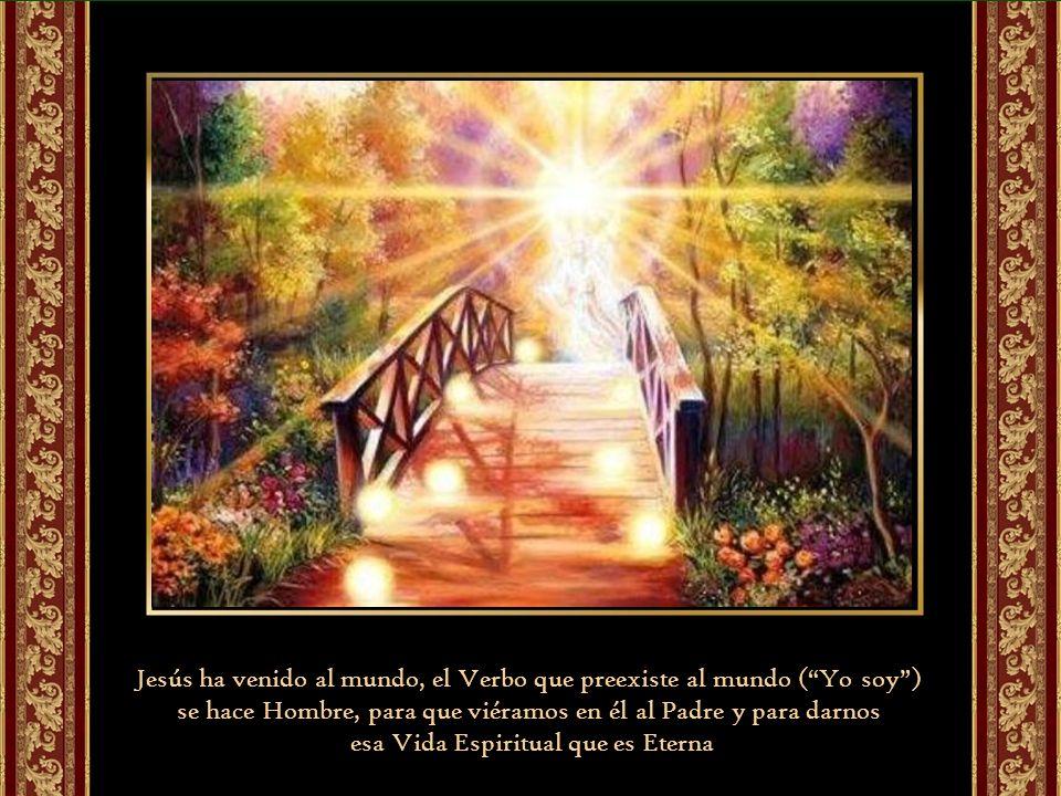 Jesús ha venido al mundo, el Verbo que preexiste al mundo (Yo soy) se hace Hombre, para que viéramos en él al Padre y para darnos esa Vida Espiritual que es Eterna