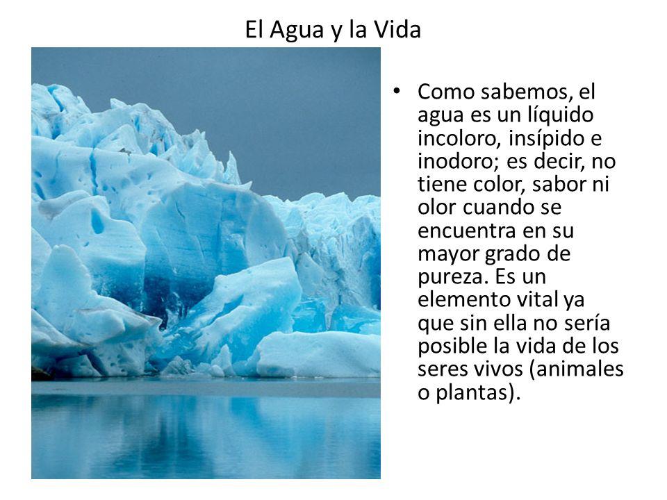 El Agua y la Vida El agua es una abundante sustancia de la Tierra; existe en varias formas y lugares, principalmente en los océanos y en los polos en forma de hielo, pero también en las nubes, lluvias y ríos.
