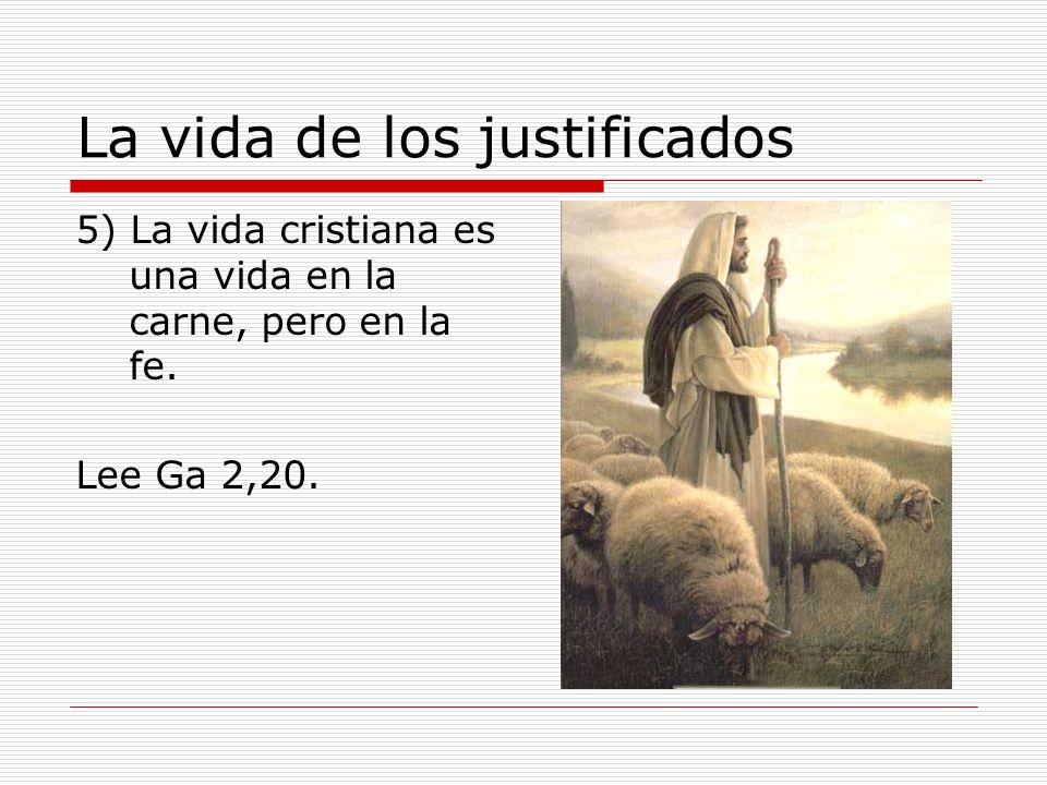 La vida de los justificados 5) La vida cristiana es una vida en la carne, pero en la fe. Lee Ga 2,20.