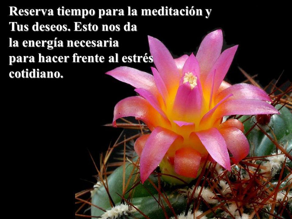 Reserva tiempo para la meditación y Tus deseos. Esto nos da la energía necesaria para hacer frente al estrés cotidiano.
