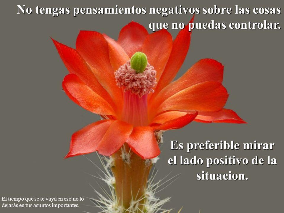 No tengas pensamientos negativos sobre las cosas que no puedas controlar. Es preferible mirar el lado positivo de la situacion. El tiempo que se te va