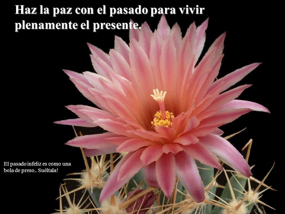 Haz la paz con el pasado para vivir plenamente el presente. El pasado infeliz es como una bola de preso.. Suéltala!