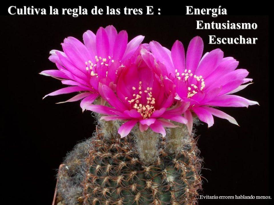 Cultiva la regla de las tres E : Energía EntusiasmoEscuchar Evitarás errores hablando menos.