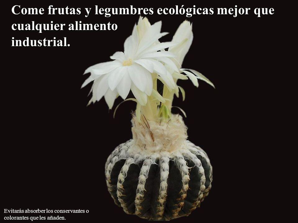 Come frutas y legumbres ecológicas mejor que cualquier alimento industrial.