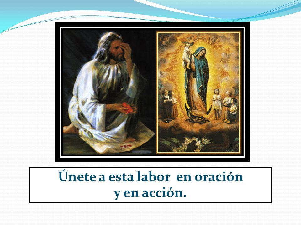 Únete a esta labor en oración y en acción.