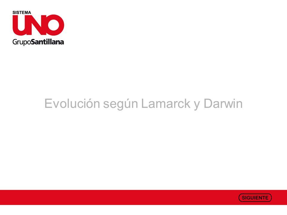 Evolución según Lamarck y Darwin