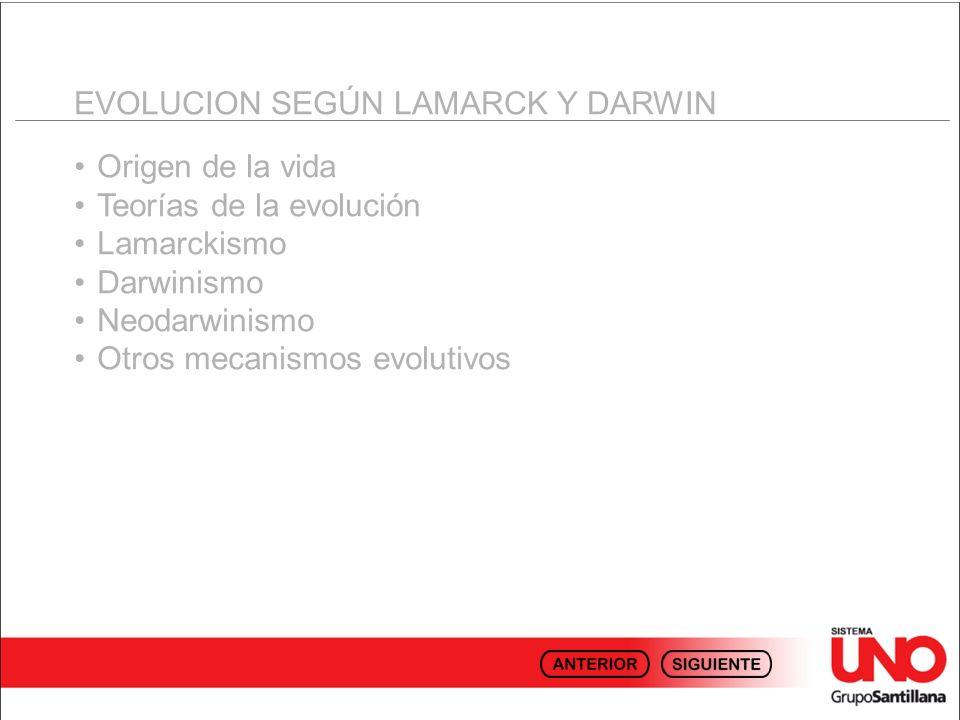 EVOLUCION SEGÚN LAMARCK Y DARWIN Origen de la vida Teorías de la evolución Lamarckismo Darwinismo Neodarwinismo Otros mecanismos evolutivos