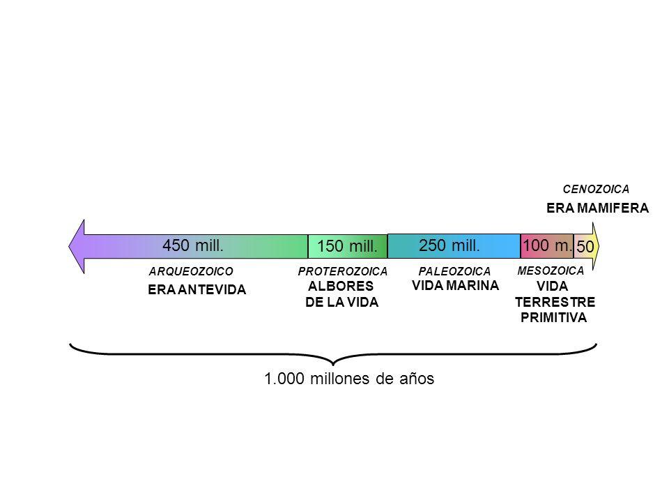 ERA ANTEVIDA PROTEROZOICA ARQUEOZOICO ALBORES DE LA VIDA 450 mill. 150 mill. PALEOZOICA 250 mill. VIDA MARINA VIDA TERRESTRE PRIMITIVA MESOZOICA 100 m