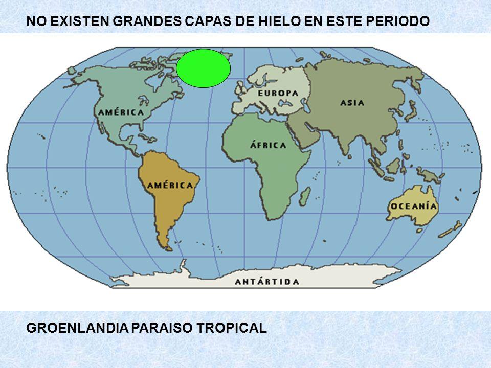 EXISTIAN MUCHAS VARIEDADES DE ANIMALES DE CONCHA Y CARACOLES, AUNQUE NO CON FINES DEFENSIVOS.