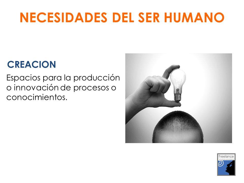 CREACION Espacios para la producción o innovación de procesos o conocimientos.