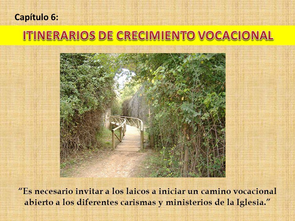 Capítulo 6: Es necesario invitar a los laicos a iniciar un camino vocacional abierto a los diferentes carismas y ministerios de la Iglesia.
