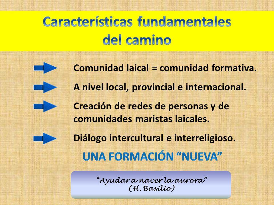 Ayudar a nacer la aurora (H.Basilio) Comunidad laical = comunidad formativa.