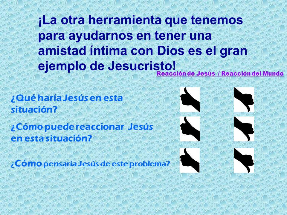 ¿Qué haría Jesús en esta situación? ¿Cómo puede reaccionar Jesús en esta situación? ¿ Cómo pensaría Jesús de este problema? Reacción de Jesús / Reacci