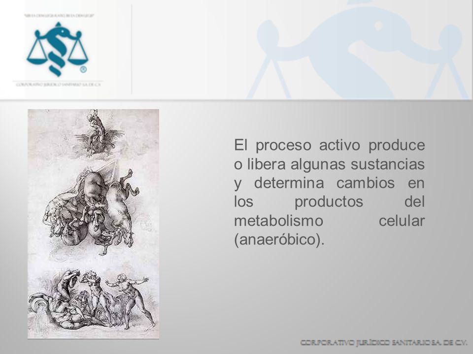 El proceso activo produce o libera algunas sustancias y determina cambios en los productos del metabolismo celular (anaeróbico).