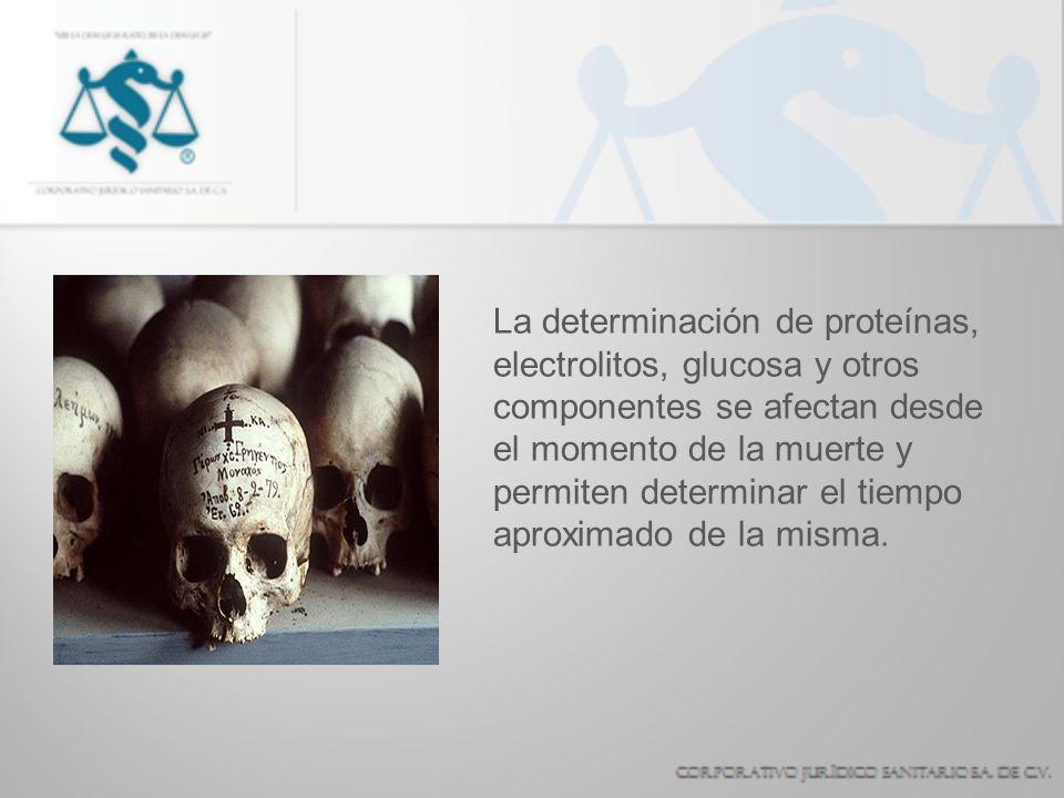 La determinación de proteínas, electrolitos, glucosa y otros componentes se afectan desde el momento de la muerte y permiten determinar el tiempo apro