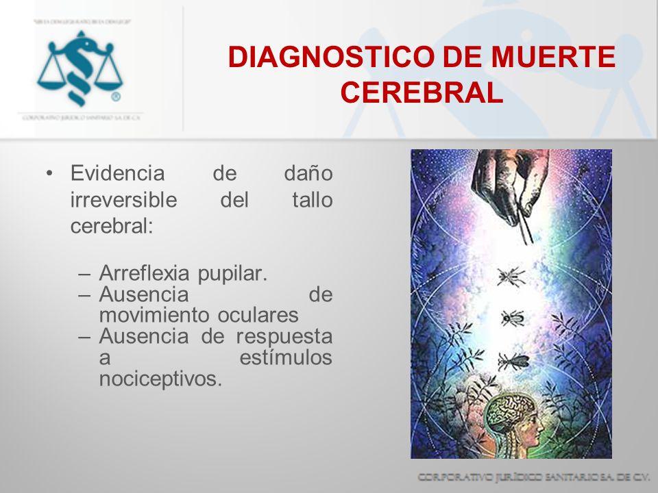 DIAGNOSTICO DE MUERTE CEREBRAL Evidencia de daño irreversible del tallo cerebral: –Arreflexia pupilar. –Ausencia de movimiento oculares –Ausencia de r