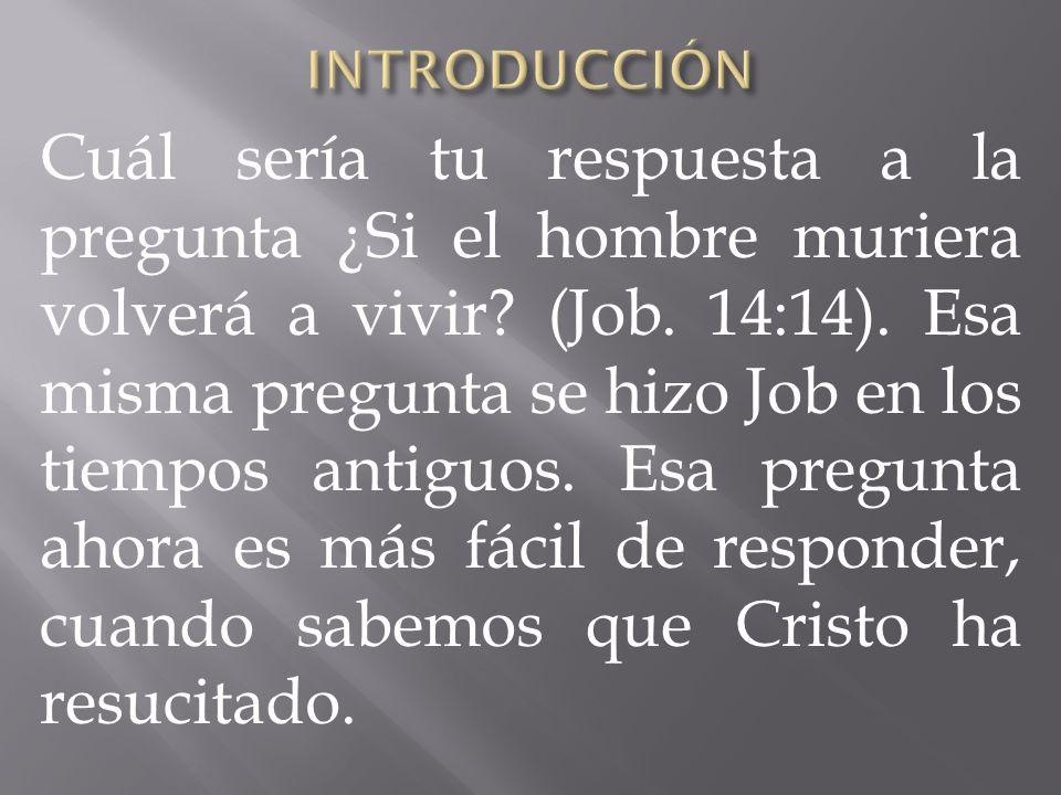 Cuál sería tu respuesta a la pregunta ¿Si el hombre muriera volverá a vivir? (Job. 14:14). Esa misma pregunta se hizo Job en los tiempos antiguos. Esa