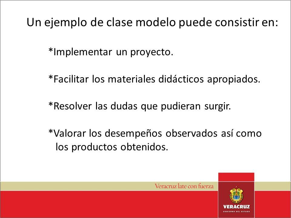 Un ejemplo de clase modelo puede consistir en: *Implementar un proyecto. *Facilitar los materiales didácticos apropiados. *Resolver las dudas que pudi