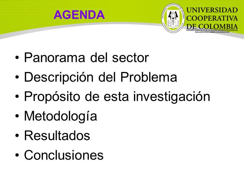 AGENDA Panorama del sector Descripción del Problema Propósito de esta investigación Metodología Resultados Conclusiones